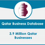 Qatar Business Data card