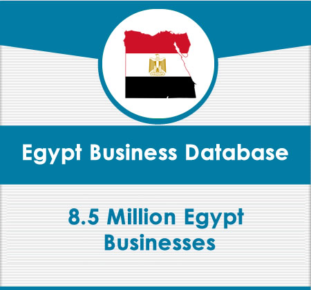 Egypt Business Data card