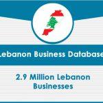 Lebanon Business Data card