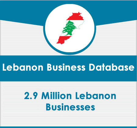 Lebanon Business Data card